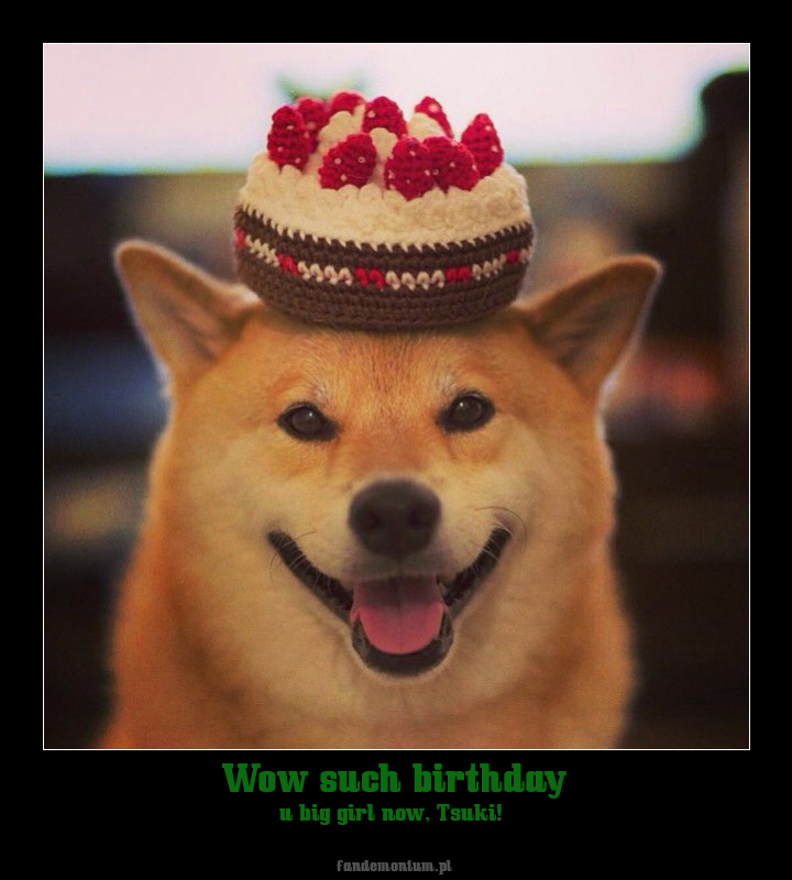 Wow such birthday - u big girl now, Tsuki!